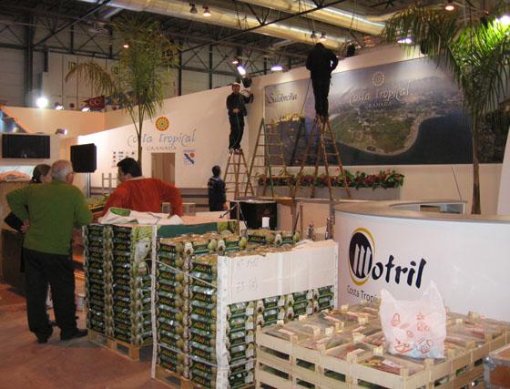 Granada 'se construye' en Fitur