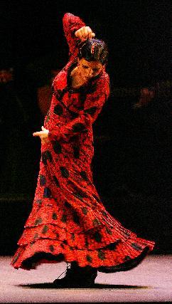 La esencia del flamenco