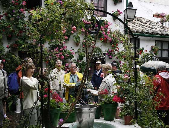 Patios de Córdoba 2008