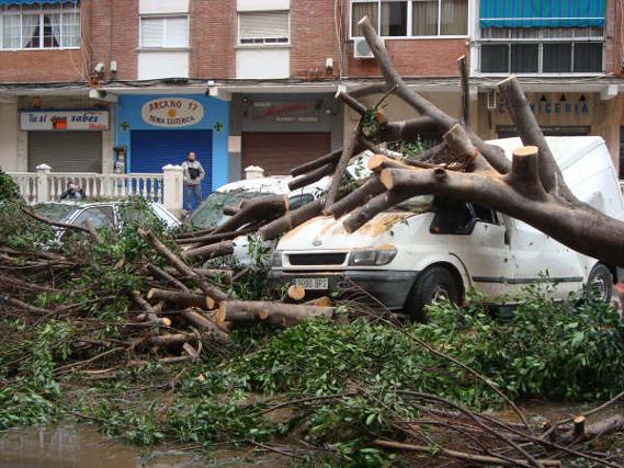 El tornado visto por los lectores