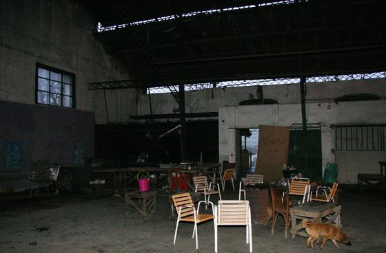 Un perro rodea las sillas que se acumulan en una de las dependencias del edificio.  Foto: Victoria Hidalgo
