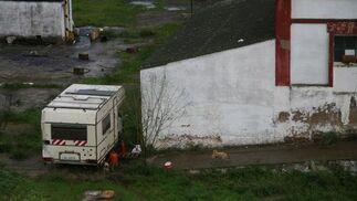 Una caravana de los okupas acampa a sus anchas en las zonas verdes de la Fábrica con algunos perros alrededor.  Foto: Victoria Hidalgo