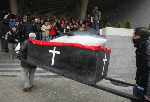 Unos 300 almadraberos se concentraron en Madrid para reclamar al Gobierno más cuota de captura  Foto: Victor Lerena