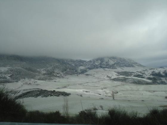 Un manto blanco cubre el interior de la provincia