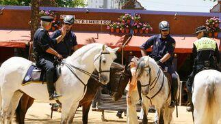 Lunes de Feria   Foto: Pascual