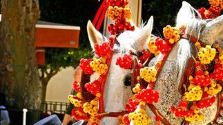 Lunes de Feria.  Foto: Pascual