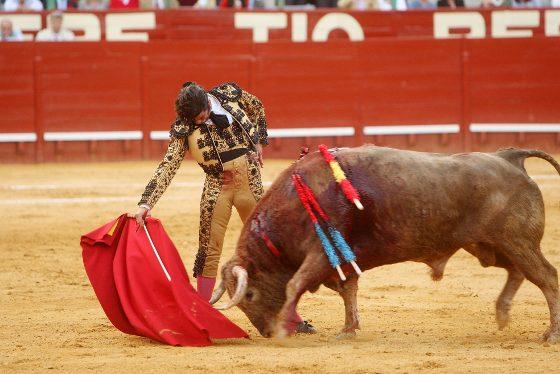 Morante de la Puebla pasando de muleta con la mano derecha al quinto toro de Núñez del Cuvillo, una conjunción que propició una faena histórica.  Foto: Juan Carlos Toro