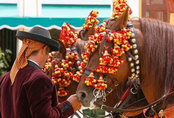 El cariño de un cochero a sus caballos