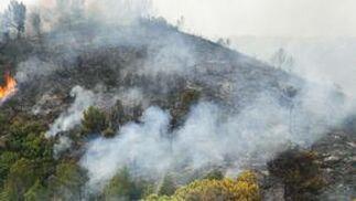 El fuego arrasa miles de hectáreas en comarcas del interior de la provincia de Valencia.  Foto: AFP