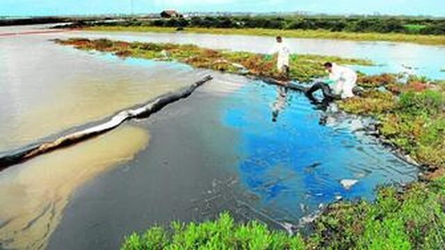 Ayuntamiento y Junta investigan un vertido de hidrocarburos en el ... - Diario de Cádiz