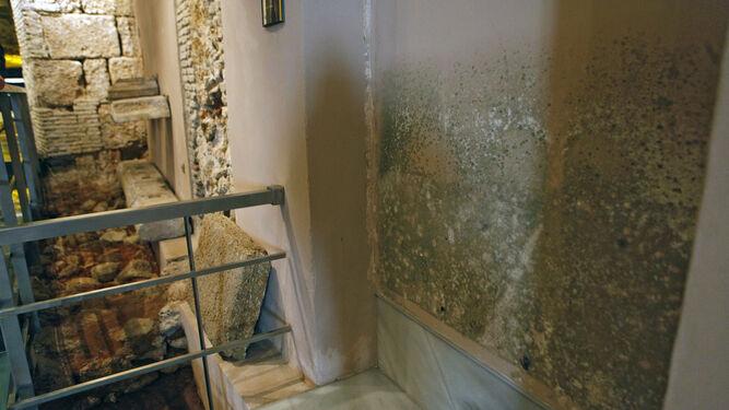 El ayuntamiento da el ltimo paso para reparar la casa del - Manchas de humedad ...
