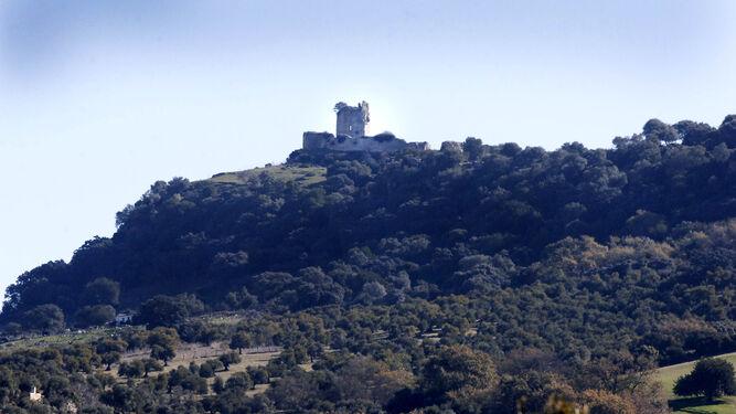 El vino Pajarete nació a finales del siglo XVI en unos viñedos ubicados junto al Castillo de Matrera de Villamartín.