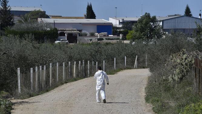 Un investigador, en la zona donde apareció el cuerpo.
