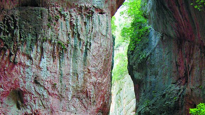 Imagen de la Garganta Verde, uno de los emblemas del Parque Natural de Los Alcornocales.