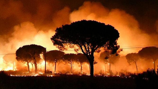 Impresionante imagen del incendio en pleno apogeo