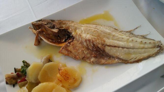 Ay, que te comoAJosé MonforteLa corvina al aceite de oliva del restaurante Playa, en Conil
