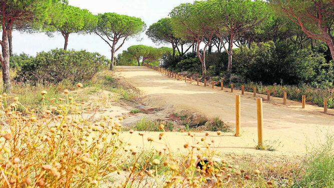 Parque de la Loma del Puerco donde se encuentran hasta seis variedades diferentes de narcisos.