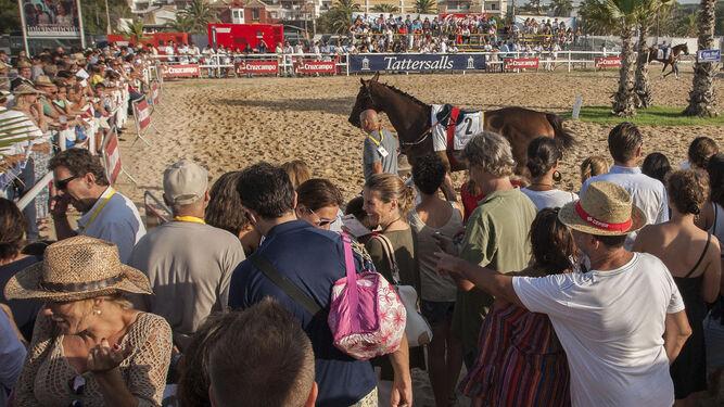 Un caballo pasa ante el público congregado en Las Piletas.