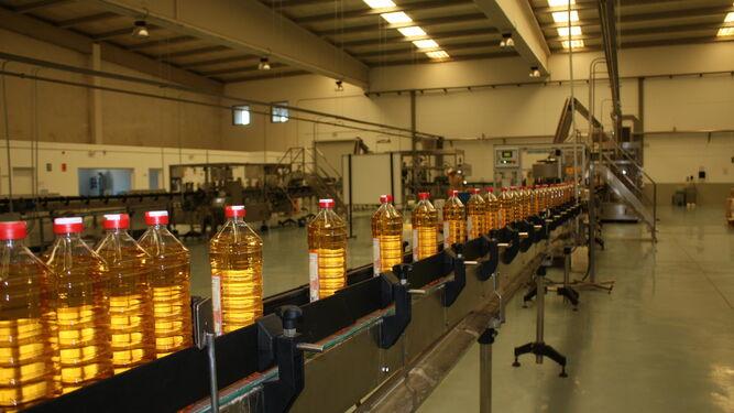 Cinta de embotellado y de etiquetado de vinagres, producto realizado para Ybarra, una de las empresas líderes en el mercado español.