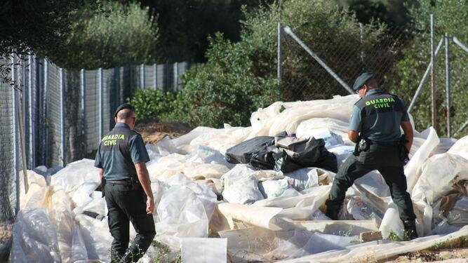 Agentes con sacos de cogollos de droga ya secos y listos para su venta.