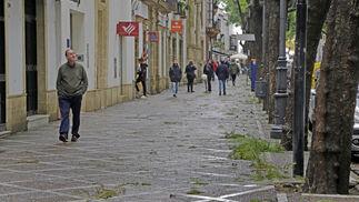 Hojas y ramas caídas en la céntrica calle Porvera, en Jerez.