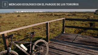 El próximo domingo día 4 de 11 de la mañana a 3 de la tarde se celebrará en el parque de Los Toruños un mercado de productos ecológicos al que acudirán para vender su producción diversas empresas de la provincia.