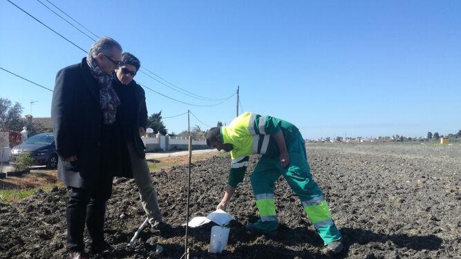 Páez y un técnico municipal observan la plantación de árboles.