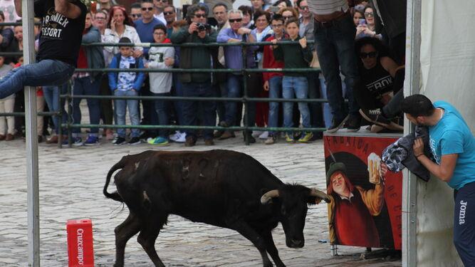 Uno de los corredores intenta ponerse a salvo de la primera de las vaquillas soltadas ayer en la plaza de San Jorge.