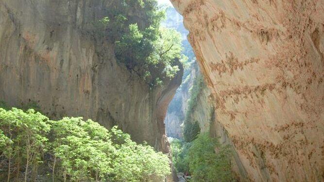 Imagen del sendero de la Garganta Verde.