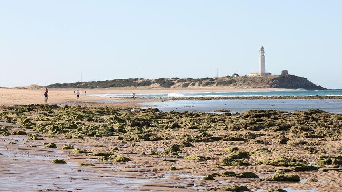 La playa de Zahora, con el Faro de Trafalgar al fondo